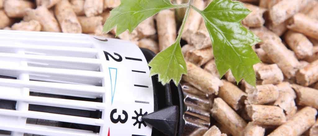 Chauffage bois pellet buche biomasse PABST